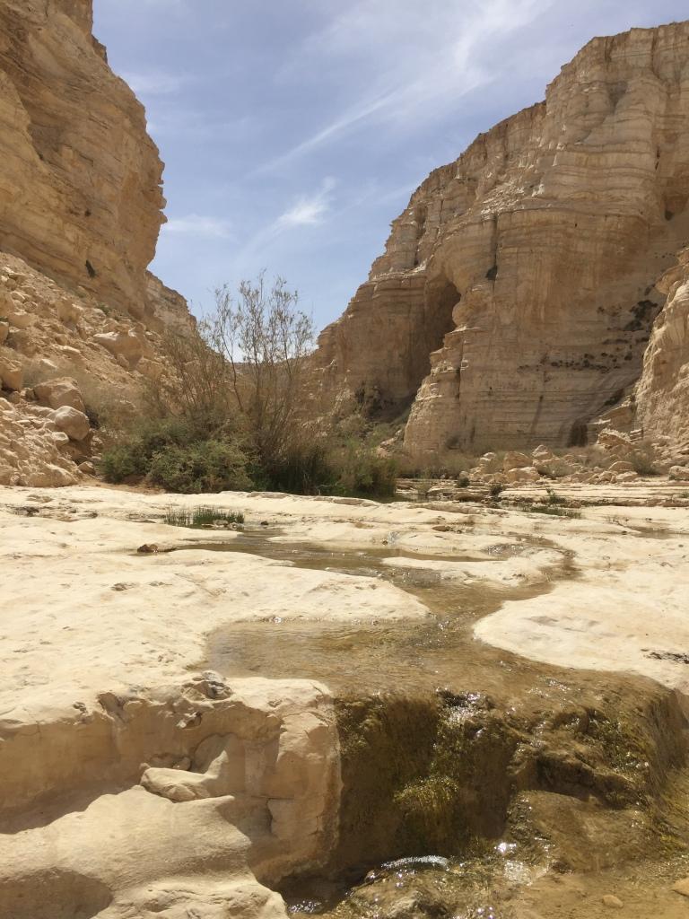 上图:汛的旷野的溪水(Ein Avdat in Zin Valley)。旷野里的溪水是何等宝贵,「神啊,我的心切慕祢,如鹿切慕溪水」(诗四十二1)!